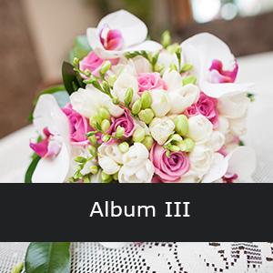 album_iii